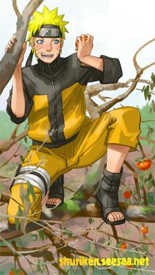 京剧大登殿张火丁曲谱-2008年11月29日 枝の上で柿の実をもぐナルト 柿の木に登ってはいけ