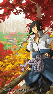 sasuke24a.jpg